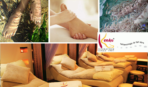 Kenko Reflexology & Fish Foot Spa