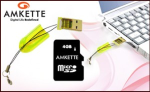 Amkette 4GB Micro SD Card with TF Card Reader