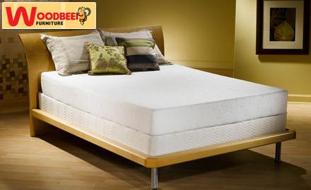 Woodbeei Furniture