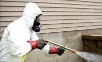 Aman Pest Control
