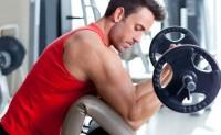 Athena Gym and Fitness