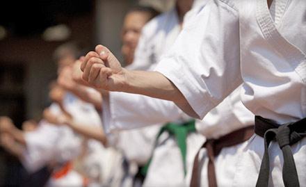 Martial Arts And Yoga Institute