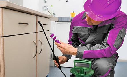 Excel Pest Control Service